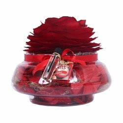 Kit Difusor Aquário Com Rosa Personalizado
